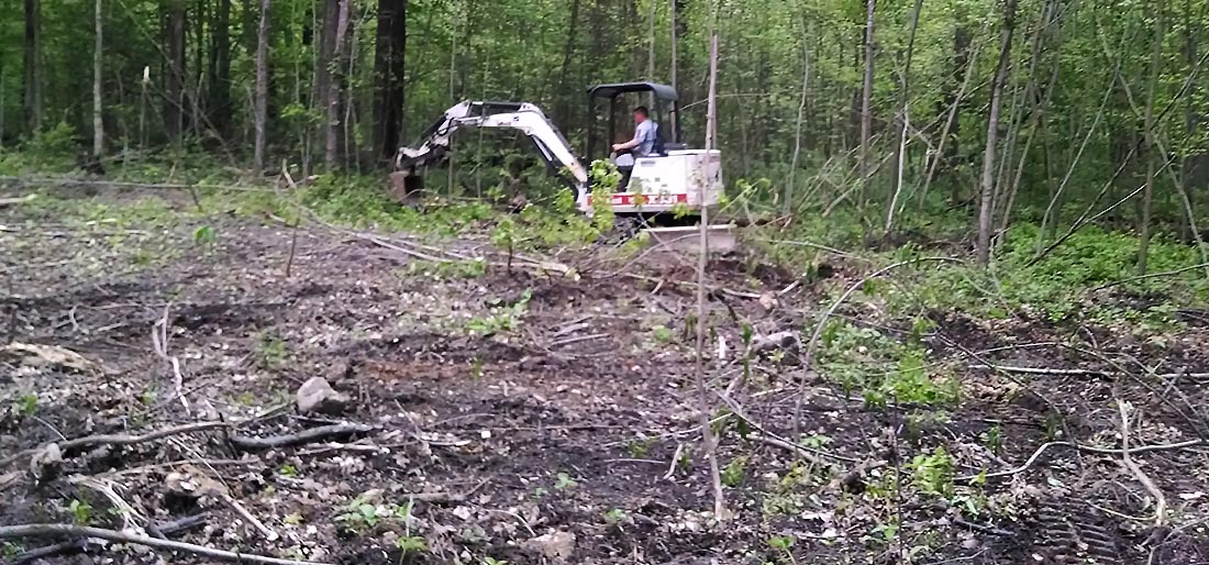 Site and Land Clearing